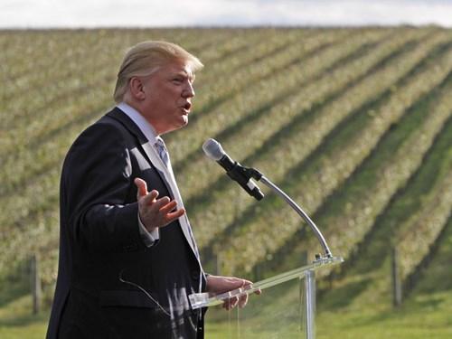 Năm 2011, Trump mua lại phần cuối cùng của khu bất động sản Kluge ở Charlottesville, Virginia, Mỹ. Ông đã trả 6,5 triệu USD cho dinh thự rộng hơn 2.100 m2 sau khi mua vườn nho và 6,2 triệu USD cho nhà máy sản xuất rượu vang trong khu bất động sản vào tháng trước đó.