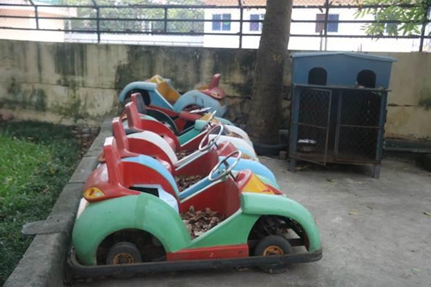 Những chiếc ô tô đồ chơi bạc màu, cũ kĩ phủ đầy lá cây bị bỏ phí bên cạnh một chuồng sắt.