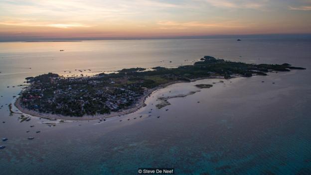 Đảo Malapascua thường xuyên tiếp đón một lượng lớn du khách thích tận mắt ngắm nhìn loài cá mập giữa đại dương.