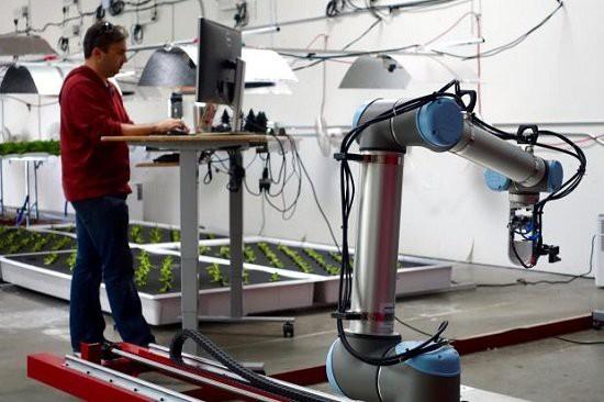 Nông trại đầu tiên ở Mỹ hoàn toàn thay thế con người bằng robot - Ảnh 2.