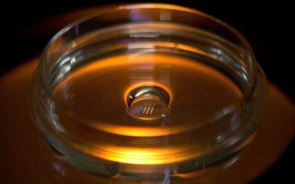 Cộng đồng khoa học thế giới dậy sóng vì nghiên cứu biến đổi gen trên cơ thể người tại Trung Quốc