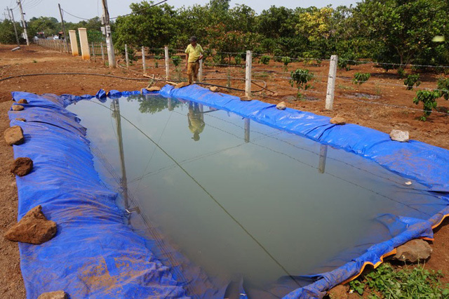Người dân xã Ea M'droh (Cư M'gar) đào hồ nhân tạo bơm trữ nước tưới cà phê.
