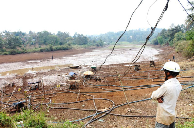 Hàng ngàn ha cà phê tại Đắk Lắk đang thiếu nước tưới.