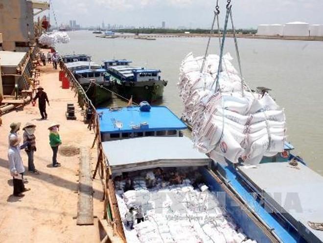 Bốc xếp gạo phục vụ xuất khẩu.