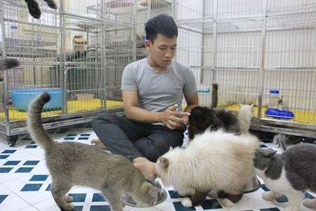 Thành Trung bên những chú mèo quý.