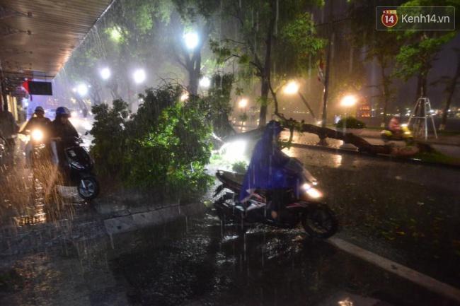 Khu vực đường Lý Thái Tổ một cây xanh đổ chắn ngang đường, một số phương tiện phải đi lên vỉa hè. Ảnh: Phương Thảo