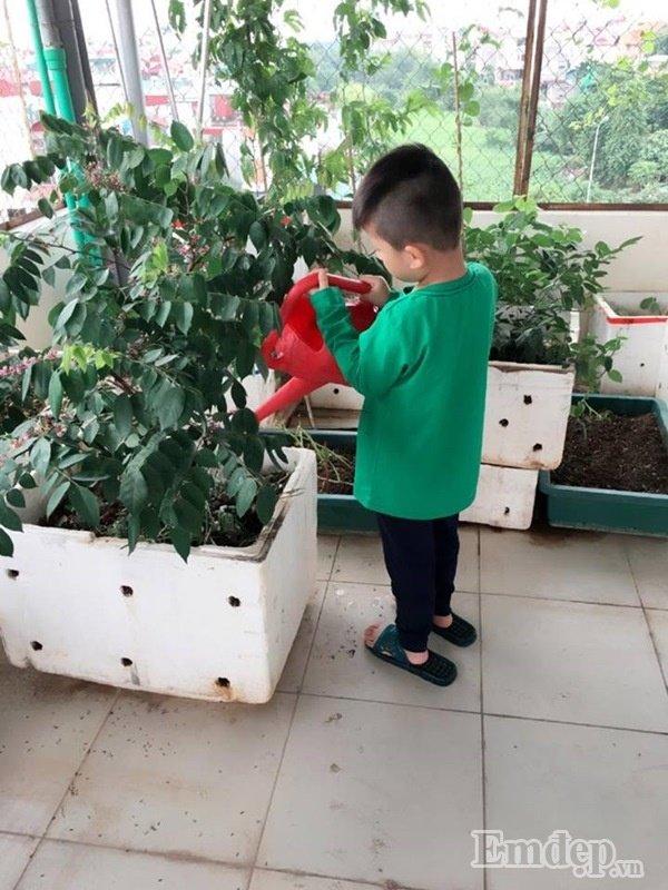 Con chị cũng rất thích được cùng mẹ chăm sóc vườn cây trên sân thượng.