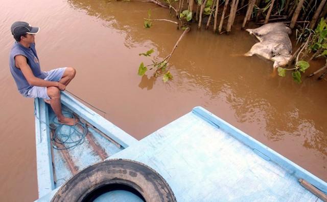 320 triệu gallons nước thải từ một nhà máy ở Minas Gerais làm ô nhiễm nguồn nước của 7 thành phố. Hơn 600.000 người dân không có nước sạch. (Nguồn: Techinsider)