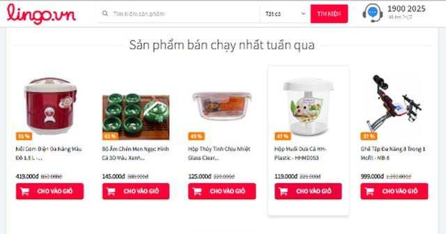 Website Lingo.vn một thời.