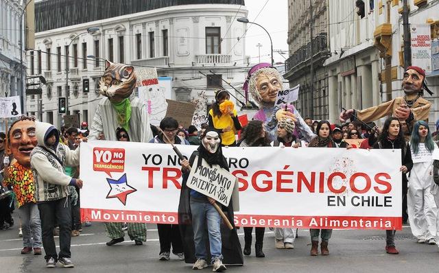 Biểu tình chống Monsanto ở Chile năm 2013
