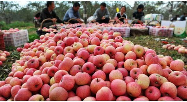 Hàng nghìn mặt hàng Trung Quốc sẽ vào Việt Nam với thuế 0% nhờ ACFTA