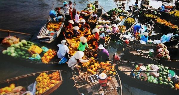 Thế giới đang bỏ cả tỷ USD để mua loại trái cây Việt nào?