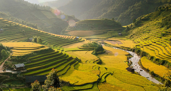 Chuyên gia du lịch Đức: Việt Nam chỉ đang bán cái các bạn có, không quan tâm đến cái khách hàng cần