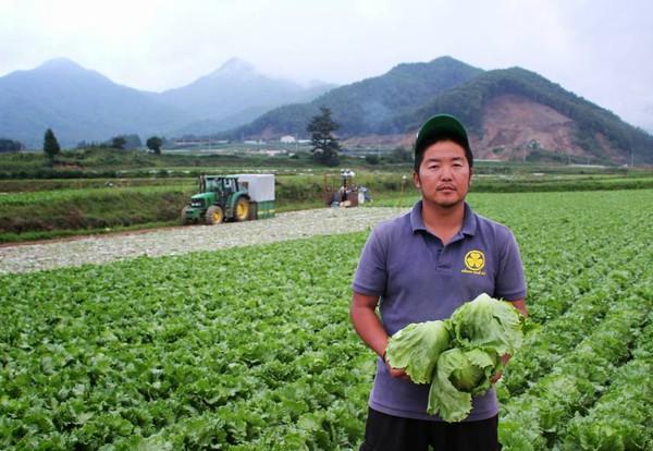Làng thần kỳ Nhật Bản: Từ nghèo nhất nước tới thu nhập bình quân hơn 200.000 USD/năm nhờ trồng xà lách