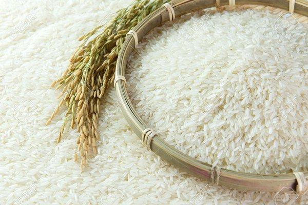 Kết quả hình ảnh cho gạo lúa
