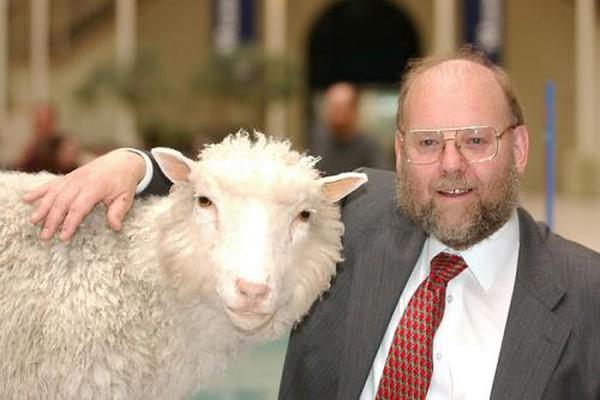 Một chú cừu đã làm thay đổi thế giới như thế nào ?