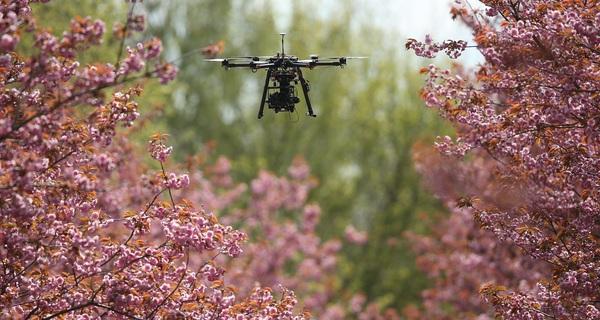 Không chỉ để chụp ảnh, quay phim, drones có thể trở thành cứu tinh của thế giới như thế nào?