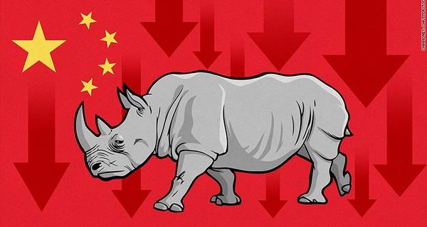 Những 'con Tê giác xám' đang đe dọa nền kinh tế Trung Quốc như thế nào?