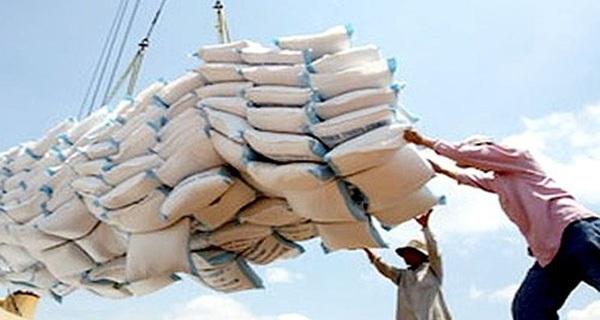 """Thắng thầu 175 nghìn tấn gạo: Cuộc cạnh tranh """"nghẹt thở"""""""