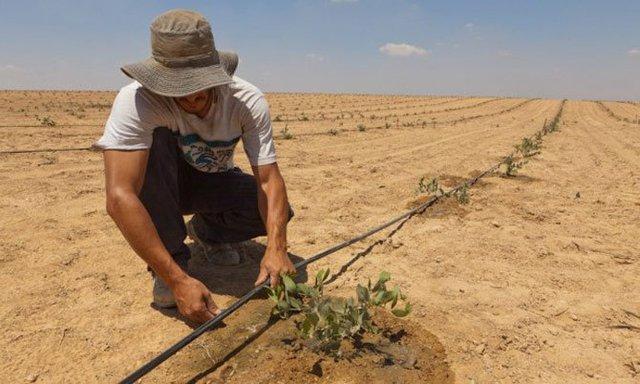 Với cách quản lý nguồn nước thế này người Israel nuôi cá, trồng cây được trên sa mạc cũng đúng thôi - Ảnh 2.