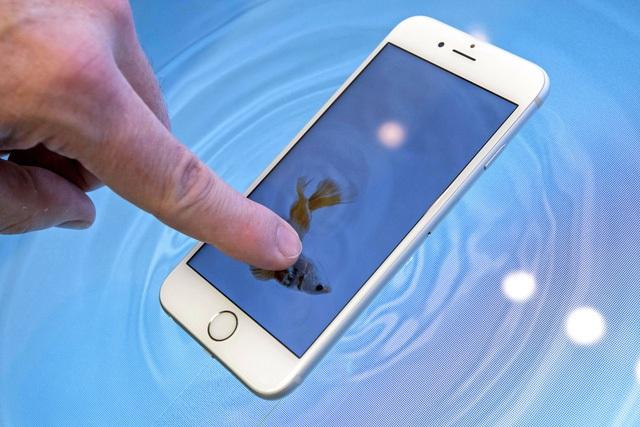 Cung cấp màn hình cho iPhone là mảng đem lại doanh thu chính cho các nhà sản xuất Nhật Bản.
