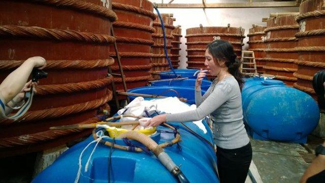 Thông tin không đầy đủ về chất lượng nước mắm có thể ảnh hưởng lớn đến nhiều vùng sản xuất nước mắm trên cả nước. Trong ảnh: tại một cơ sở sản xuất nước mắm ở Phú Quốc, Kiên Giang - Ảnh: ANH ĐỨC