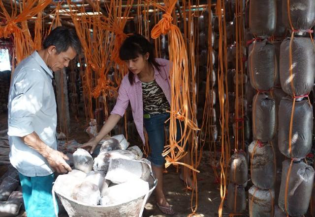 Ngoài làm giàu, ông Thạch còn tạo việc làm cho nhiều lao động ở địa phương. Ảnh: Nguyễn Dương.