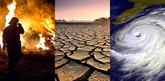 Biến đổi khí hậu cũng vậy.