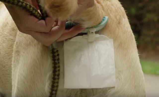 Những chiếc túi được gắn vào đuôi cún cưng thông qua một phụ kiện gắn mềm.