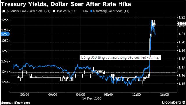Lợi suất trái phiếu Mỹ kỳ hạn 2 năm và chỉ số Bloomberg Dollar Spot đều tăng vọt