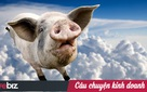 """Không chỉ làm khổ người nông dân, con lợn còn khiến """"đại gia"""" nông nghiệp Dabaco thua lỗ nặng nề"""