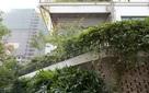 """Báo Mỹ """"sửng sốt"""" trước ngôi nhà phủ đầy cây xanh tuyệt đẹp giữa thủ đô"""