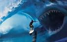 """Tại sao các đại gia trên thương trường thường được ví với """"cá mập"""" chứ không phải một loài nào khác?"""