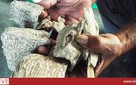 Bỏ 1 tỷ ăn 10 tỷ: Thế giới ngầm dân buôn trầm hương