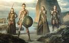 Wonder Woman - Bộ phim có doanh thu cao nhất của vũ trụ điện ảnh DC tại Việt Nam