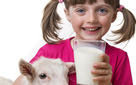 7 lý do khiến nhiều người Ấn Độ thích uống sữa dê
