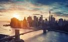 Vì sao tại New York từng diễn ra 'cuộc chiến' giữa người và lợn cách đây hơn 1 thế kỷ?