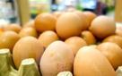 """Tiết lộ mới về bê bối """"trứng bẩn"""" từ Hà Lan vào Đức: Quy mô gây sốc"""
