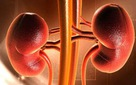 Bệnh từ miệng mà ra: Những chất ăn vào chỉ khiến thận hư