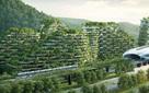 Trung Quốc bắt đầu xây dựng Thành phố cây xanh có tới hàng triệu cây, hấp thụ 10.000 tấn CO2/năm, 3 năm nữa sẽ xây xong