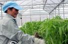 """100.000 tỷ đồng cho nông nghiệp công nghệ cao: """"Chìa khóa"""" nằm ở Chính phủ?"""