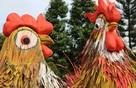 Năm Đinh Dậu, thế giới sẽ ăn nhiều thịt gà hơn?