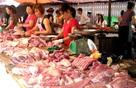 Nông dân Việt khóc ròng khi Tết đến cận kề mà giá thịt heo lại rớt thê thảm, vì đâu nên nỗi?