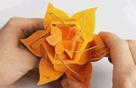 13 mẫu bao bì siêu chất chinh phục những khách hàng dù khó tính nhất