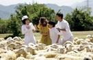 """Nhà sản xuất phim Việt: """"Tết này chỉ mong không lỗ"""""""