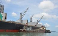 VN bắt đầu phải nhập khẩu quặng sắt quy mô lớn