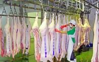 Lò mổ lậu phát triển, nhà máy trăm tỷ 'treo dao'