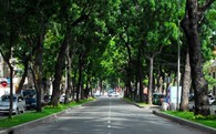 Tin vui: Hà Nội sẽ trồng thêm 1 triệu cây xanh, xây 25 công viên, 5 công viên đạt chuẩn thế giới trong 5 năm tới