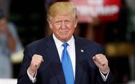 Thành viên hội đồng quản trị Twitter: Donald Trump đắc cử được là nhờ chúng tôi