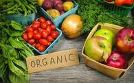 Việt Nam có rau hữu cơ sạch, thịt sạch, nhưng đa phần đều mang đi xuất khẩu